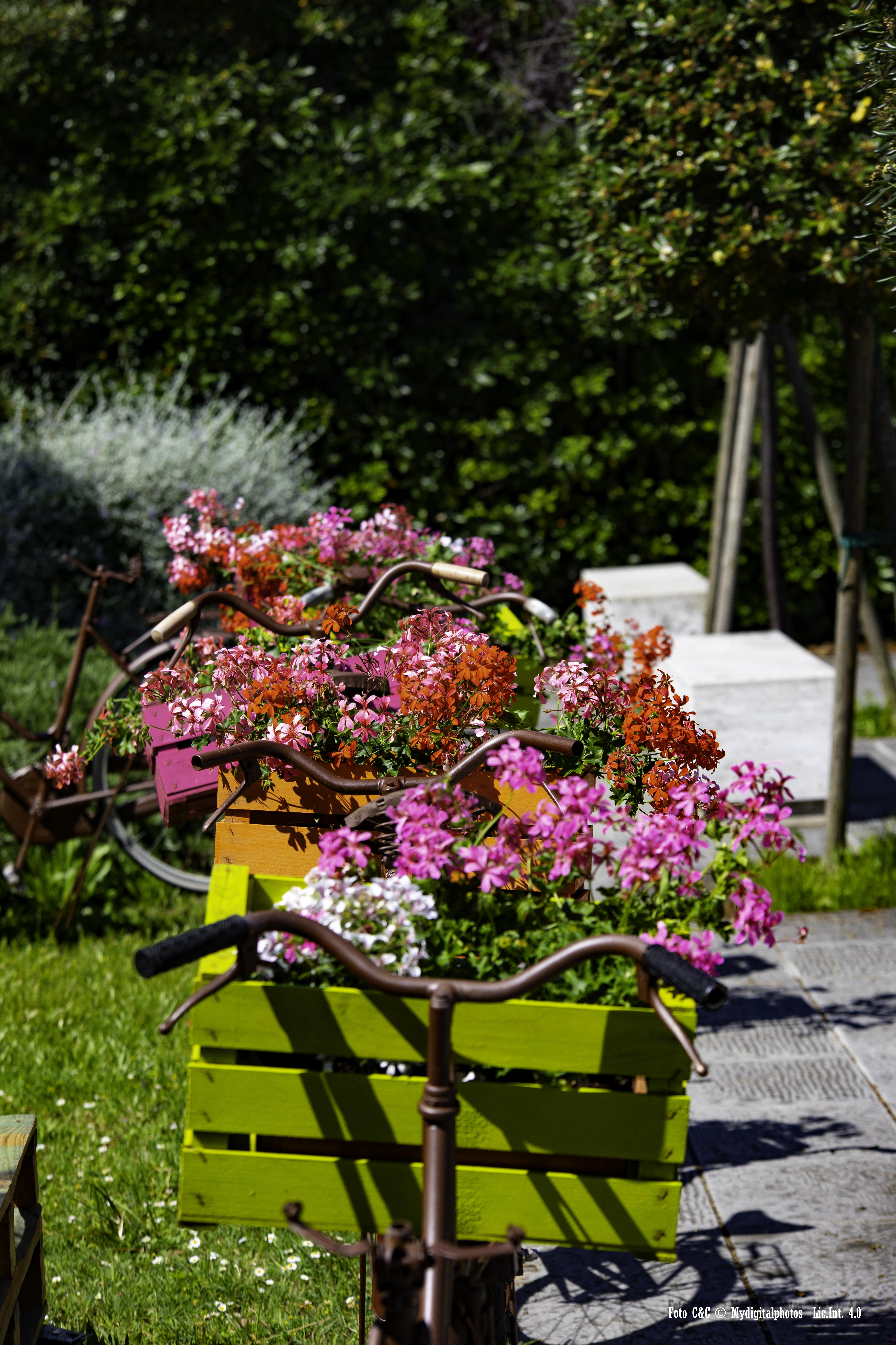 tirrenia urban bicicletta con fiori